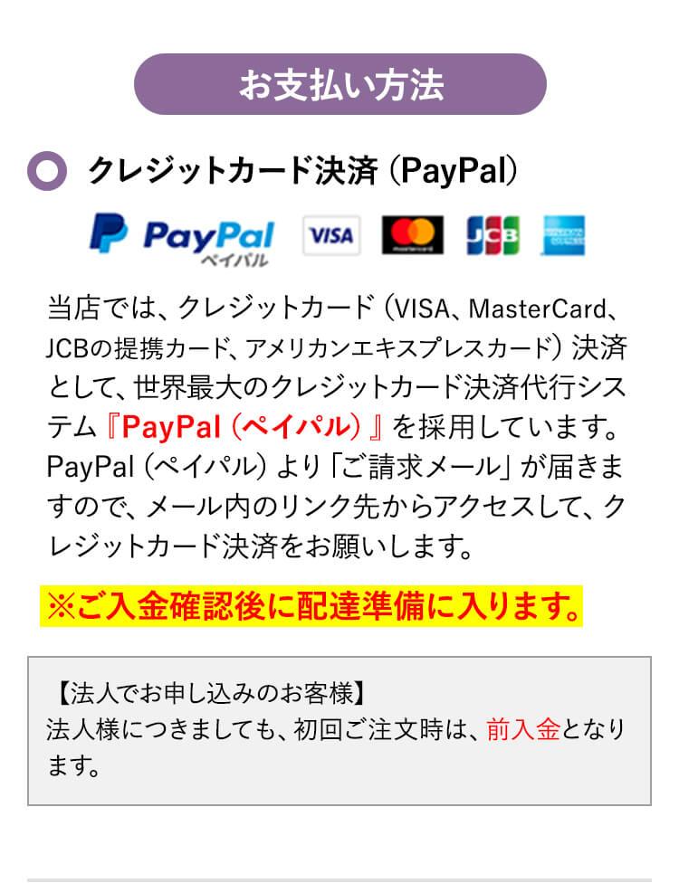 お支払い方法 クレジットカード決済(PayPal)