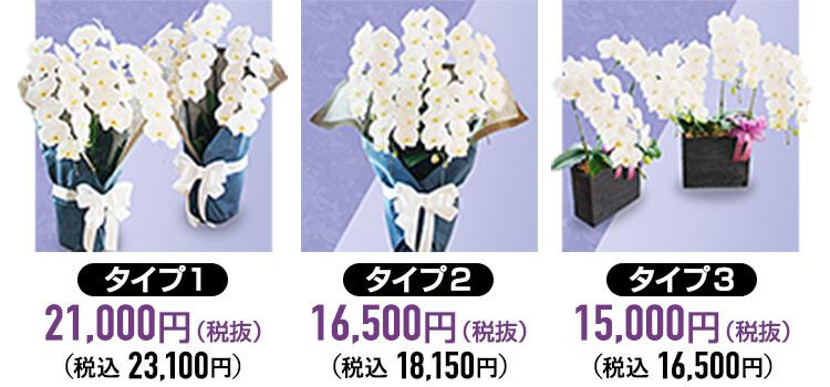 供花の胡蝶蘭タイプ種類