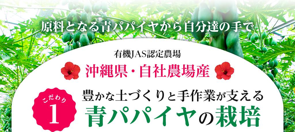 原料となる青パパイヤから自分達の手で 有機JAS認定農場 沖縄県・自社農場産 こだわり1 豊かな土づくりと手作業が支える 青パパイヤの栽培
