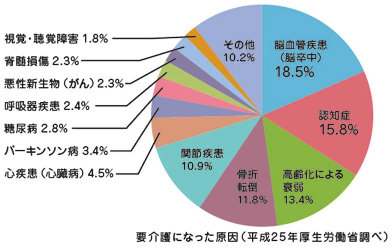 要介護になった原因の円グラフ