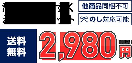 【送料無料】お楽しみセット 2,980円 他商品同梱不可/のし対応可能