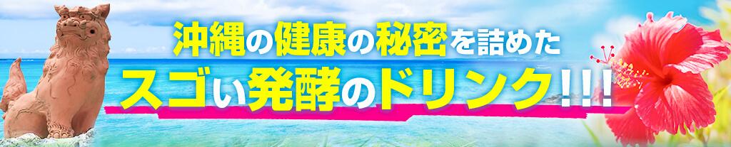 沖縄の健康の秘密を詰めたスゴい発酵のドリンク!!!
