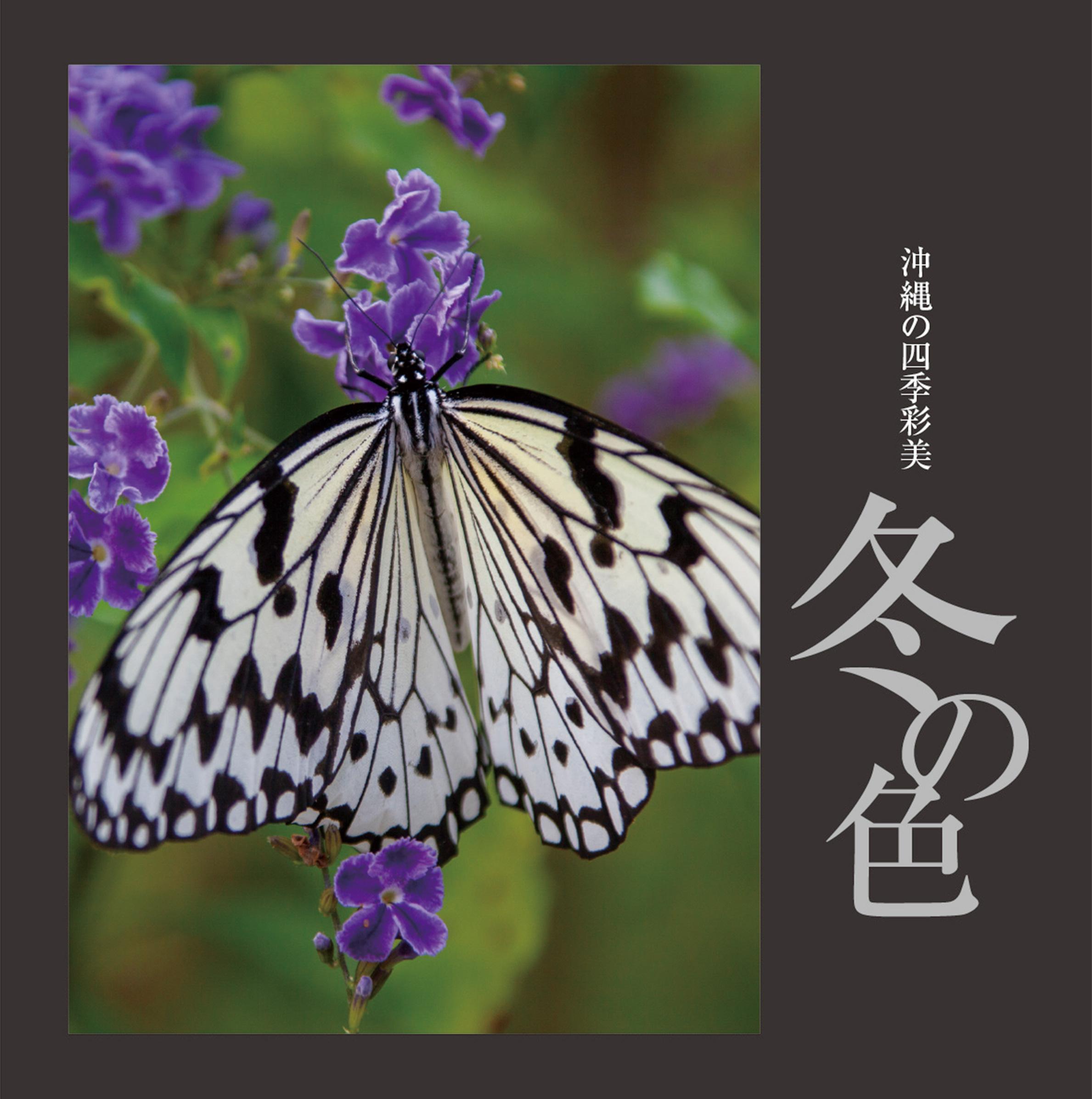 〜沖縄の四季彩美〜冬の色