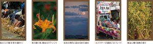 沖縄の四季彩美〜秋の色〜