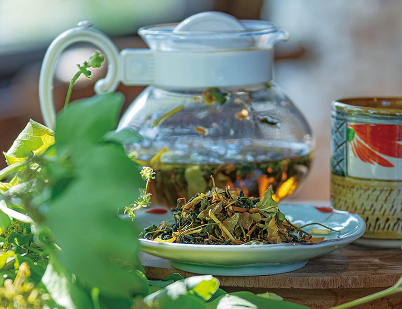 薬草の香りはそのままに、苦みは和らいで飲みやすくなります