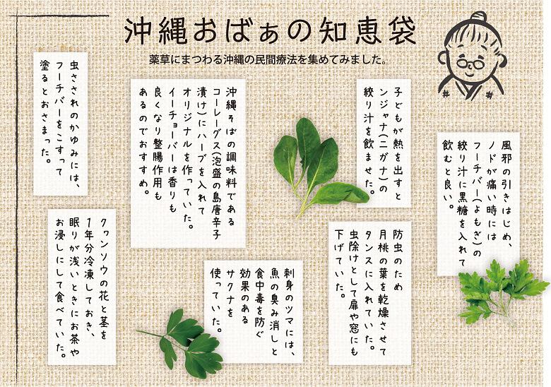 沖縄おばぁの薬草にまつわる知恵袋