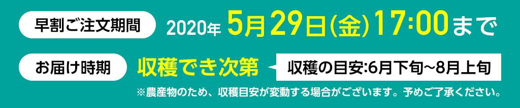 早割ご注文期限:2020年5月29日(金)17時まで、お届け期間:収穫でき次第(収穫の目安:6月下旬〜8月上旬)