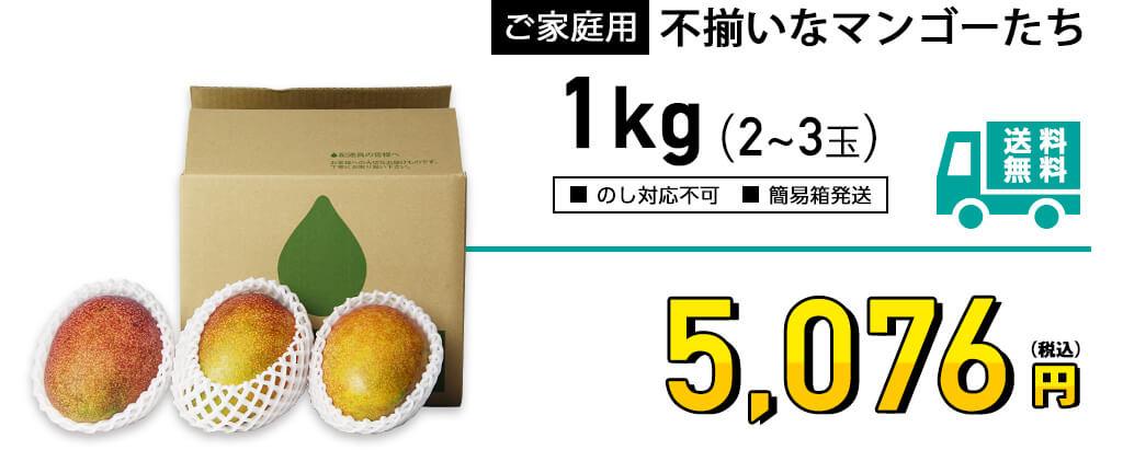ご家庭用 不揃いなマンゴー 1kgの価格