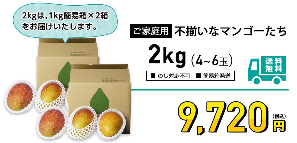 ご家庭用 不揃いなマンゴー 2kgの価格