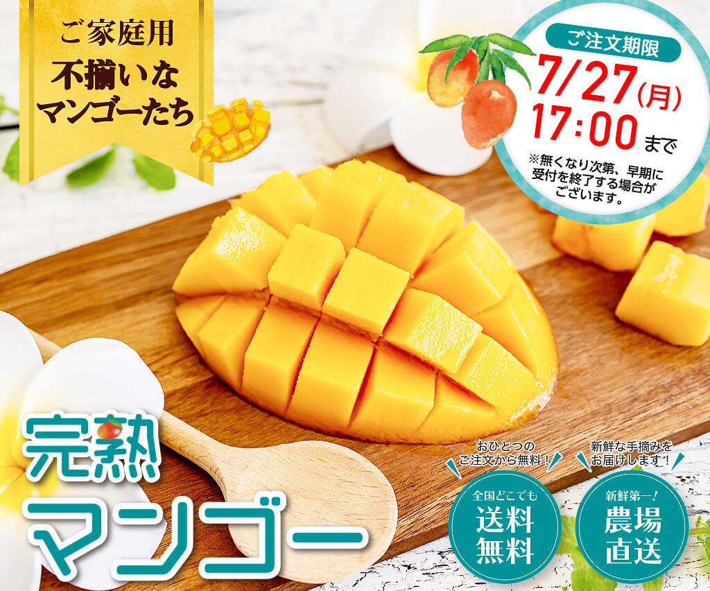ご家庭用 不揃いなマンゴー