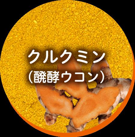 クルクミン  (醗酵ウコン)