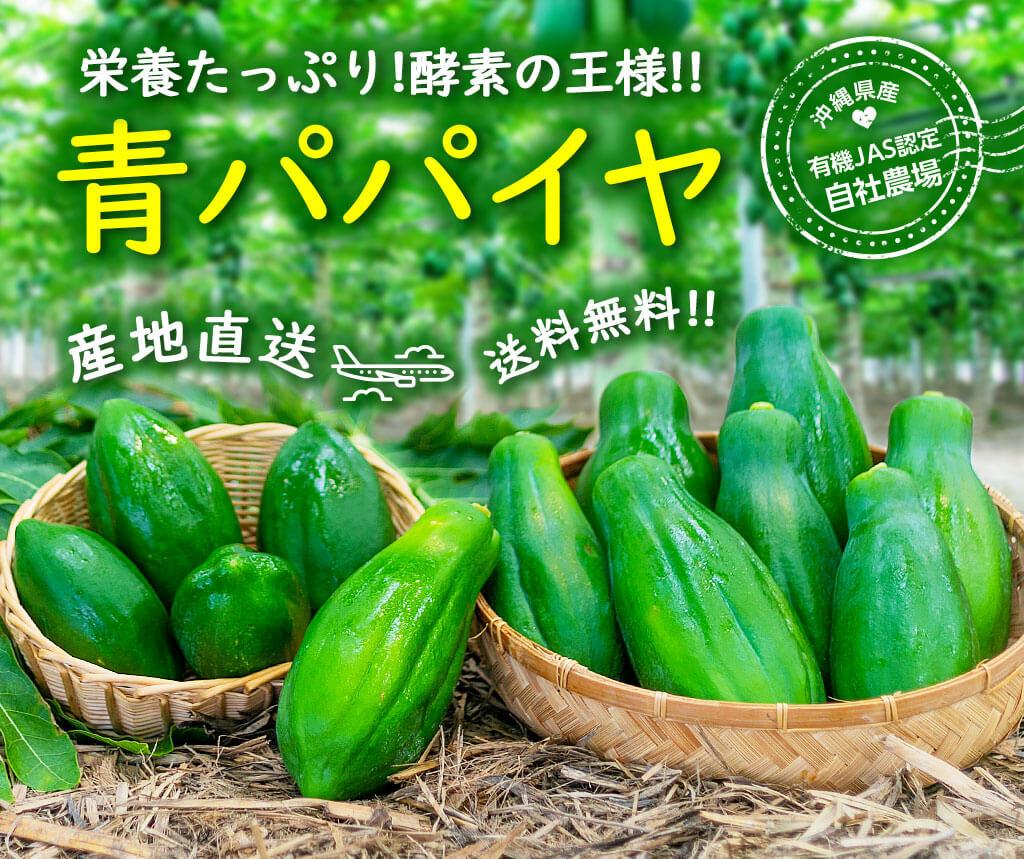 栄養たっぷり!酵素の王様!!沖縄県産 有機JAS認定 青パパイヤ