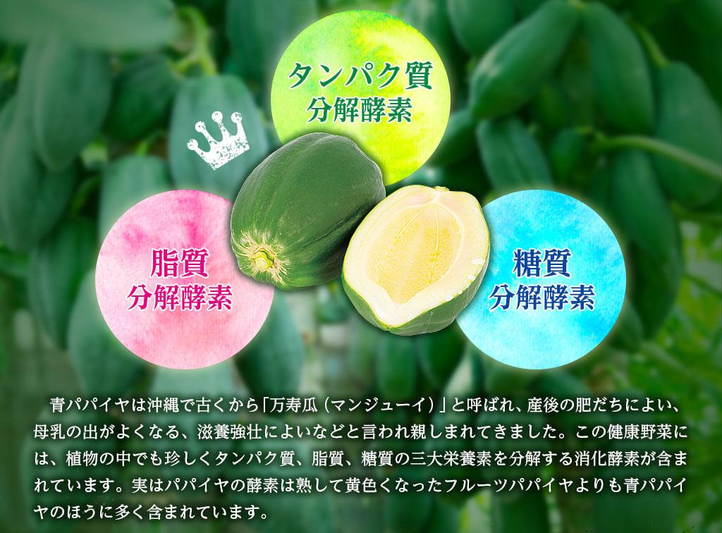 青パパイヤは沖縄で古くから「万寿瓜(マンジューイ)」と呼ばれ、産後の肥だちによい、母乳の出がよくなる、滋養強壮によいなどと言われ親しまれてきました。この健康野菜には、植物の中でも珍しくタンパク質、脂質、糖質の三大栄養素を分解する消化酵素が含まれています。実はパパイヤの酵素は熟して黄色くなったフルーツパパイヤよりも青パパイヤのほうに多く含まれています。
