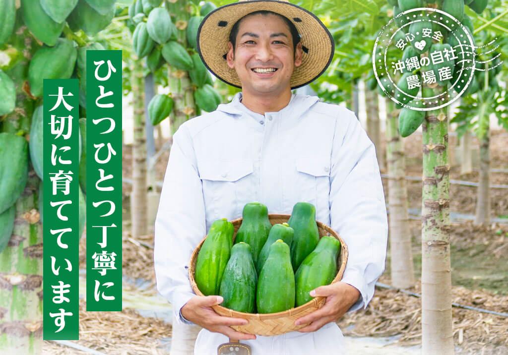 安心・安全!沖縄の自社農場産。ひとつひとつ丁寧に大切に育てています。