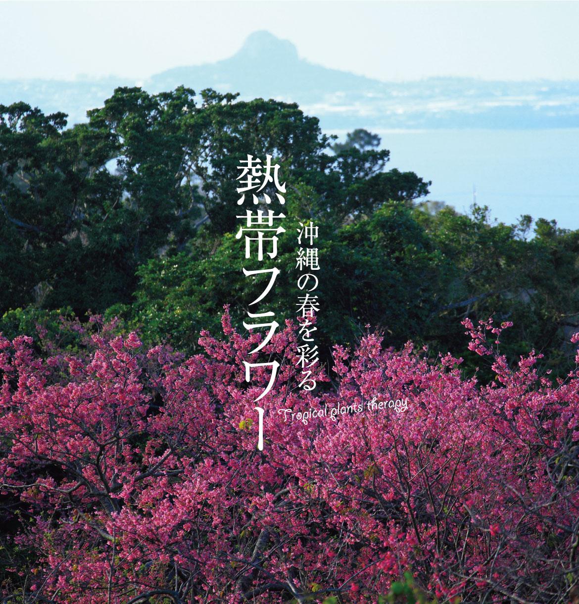 沖縄の世界遺産・勝連城跡