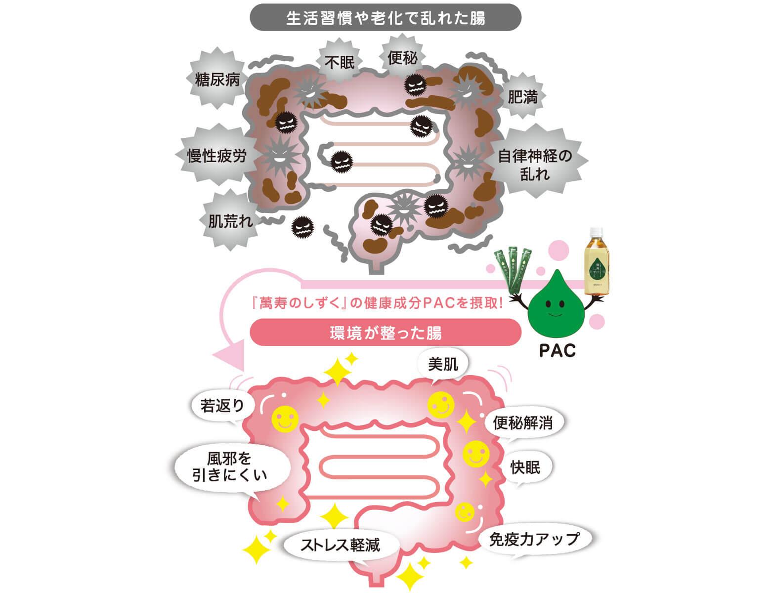 『萬壽のしずく』で腸内環境が整うとどのような効果がありますか?