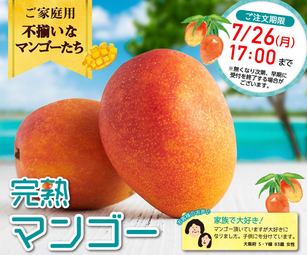 ご家庭用 不揃いなマンゴーたち