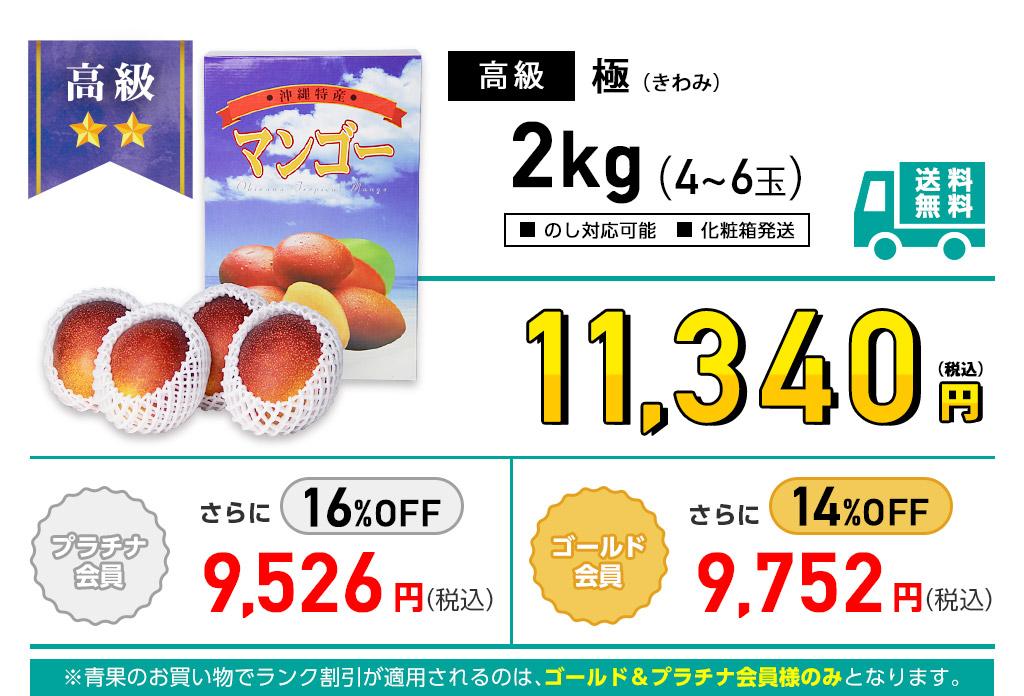 高級マンゴー 極(きわみ) 2kgの価格