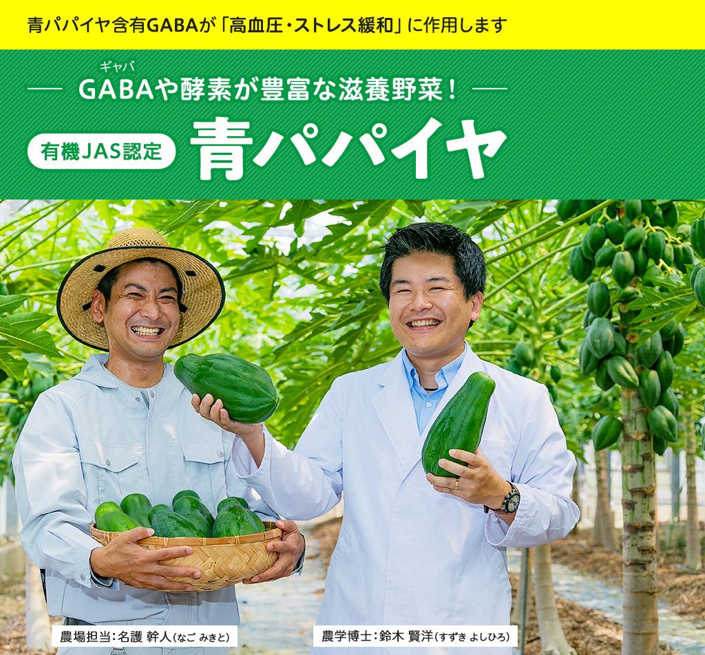 GABAや酵素が豊富な滋養野菜!青パパイヤ(GABA王)ギャバ王