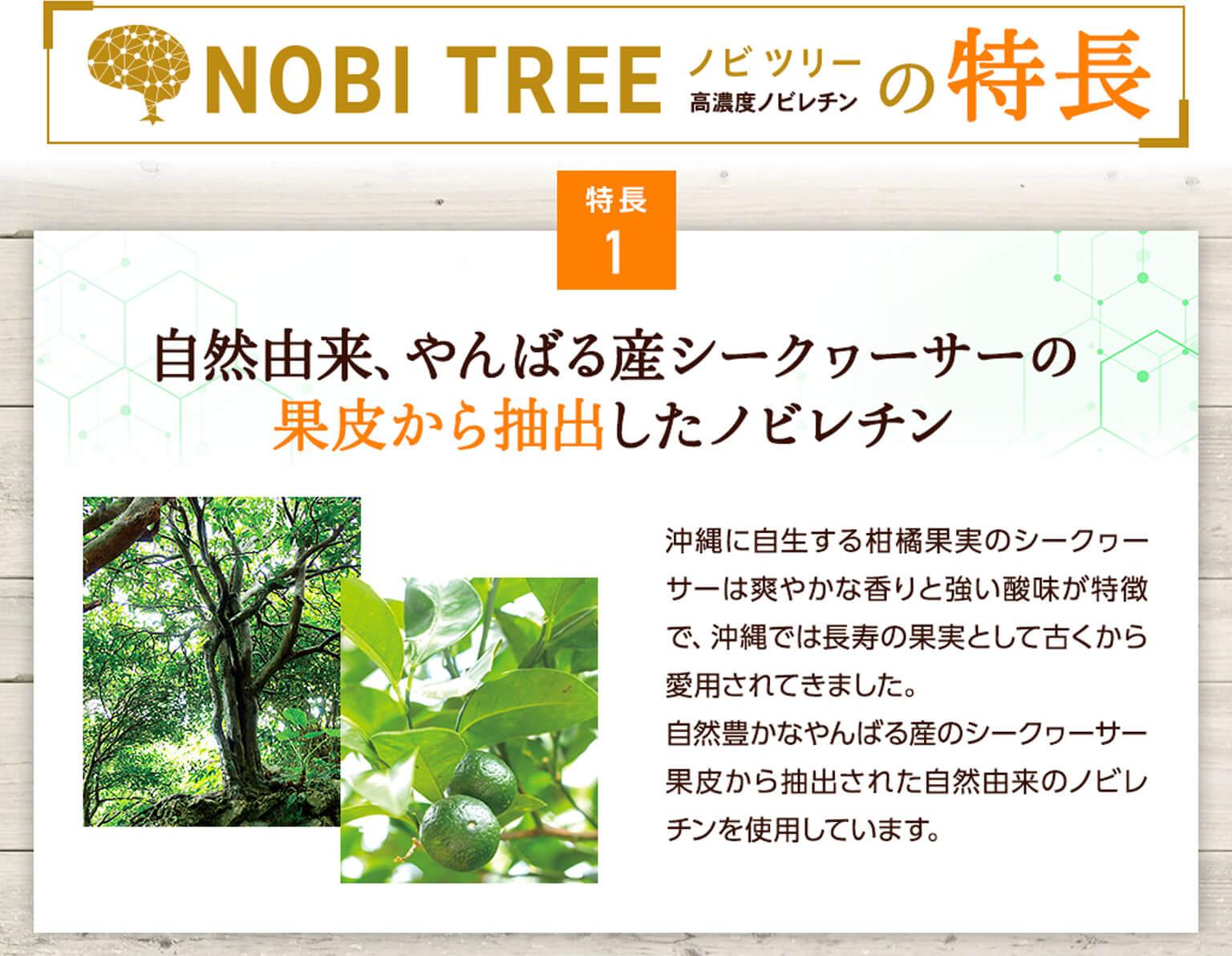 ノビツリーの特長・特長1:自然由来、やんばる産シークヮーサーの果皮から抽出したノビレチン